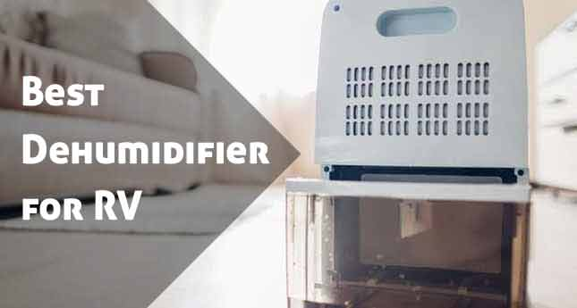 best rv dehumidifier